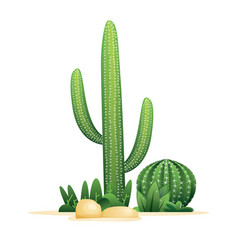 cactuses and stones isolated on white vector image