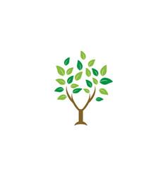 Elegant tree leaf agriculture logo design template vector