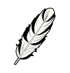 Feather free spirit rustic decoration ornate vector