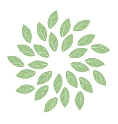 green leaves mandala vector image