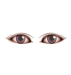 Human eye vector
