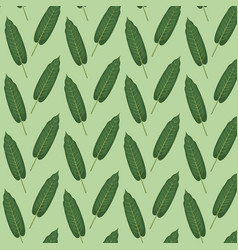 pattern color set decorative of elongated green vector image