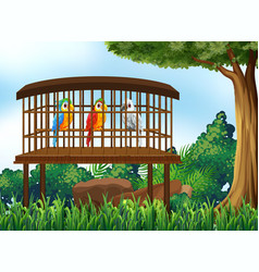 Three parrot birds in wooden cage vector