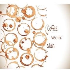 Coffee cup marks vector image vector image