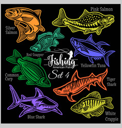 american fish - set 4 for creative design vector image