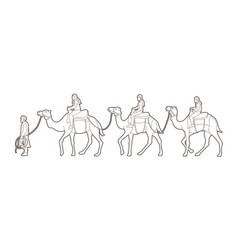 cameleer with camels cartoon graphic vector image