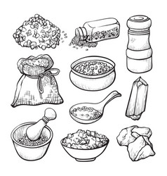 Food salt sketch natural seasoning and cooking vector