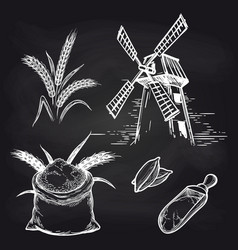 mill and bakery products on blackboard vector image