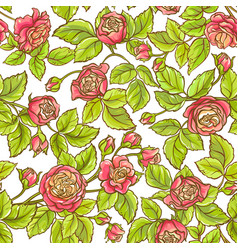 rose branch pattern vector image