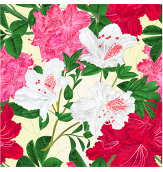 Seamless texture flowers pink white and red vector