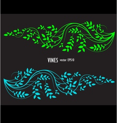 silhouette vine and leaves floral decorative vector image