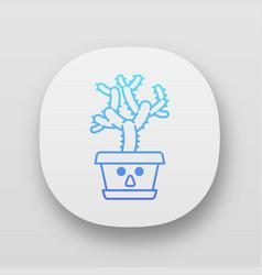 Teddy bear cholla app icon vector