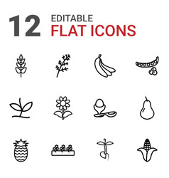 12 organic icons vector