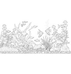 Aquarium for coloring vector