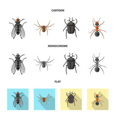 Isolated object insect and fly logo collection vector