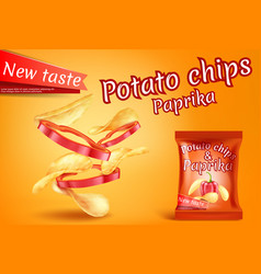 Realistic potato chips paprika slices vector