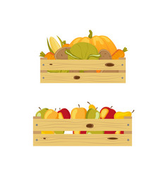 Two wooden boxes packed with apples and vegetables vector