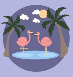 Wildlife flamingo with flamingos on sea and vector