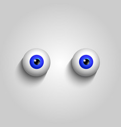pair of blue eyeballs isolated on white vector image