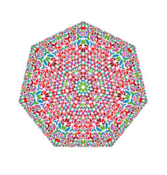 Abstract colorful ornate isolated floral heptagon vector