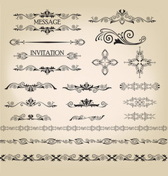 calligraphic floral element page decor vignette vector image