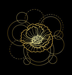 Gold poppy and circles on black background vector