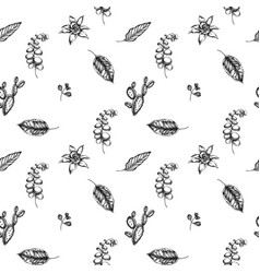 seamless pattern with black and white ficus vector image