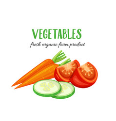 vegetables carrot slices of cucumber and tomato vector image