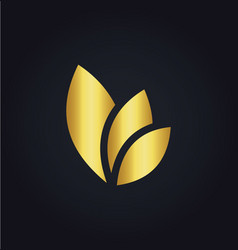 leaf eco colored gold logo vector image vector image