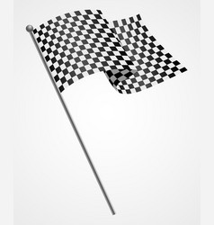 A racing flag vector