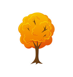 cartoon style fall autumn tree vector image