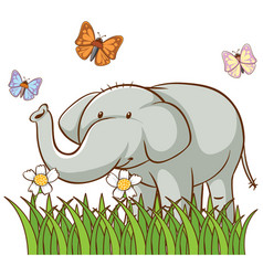 isolated picture gray elephant vector image