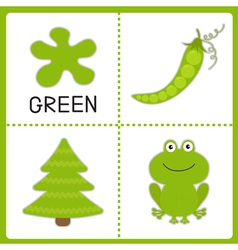 Learning green color Educational cards for kids vector