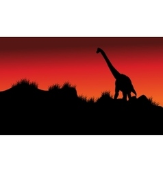 One brachiosaurus in fields at morning vector