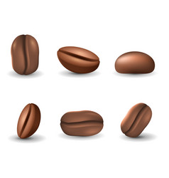 set of coffee beans isolated on the white vector image