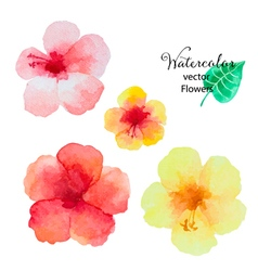 Set of watercolor hibiscus flowers vector