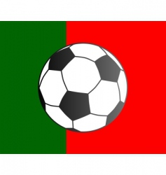 flag of Portugal and soccer ball vector image vector image