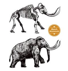 Sketch Hand Drawn Mammoth vector image vector image