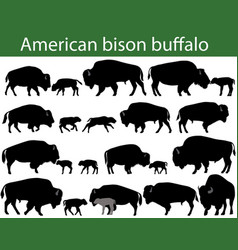 american bison buffalo silhouettes vector image