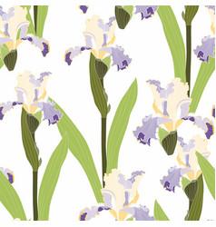 Arrangement blue yellow iris flowers vector