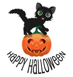 black cat and pumpkin for halloween vector image