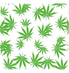 Cannabis or marijuana seamless pattern vector