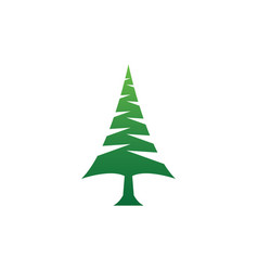 elegant pine tree in hexagon shape logo design vector image