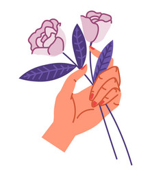 female hand holding two roses bouquet composition vector image