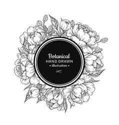 Flower vintage frame drawing peony rose vector