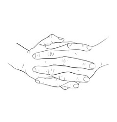 hand holdind together vector image