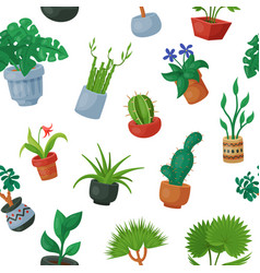 Home plants in flowerpots potted flowery vector
