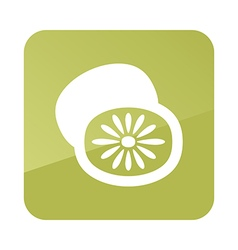 Kiwi outline icon Tropical fruit vector