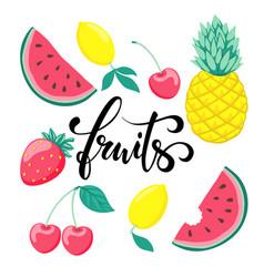 set of fruits symbol of summer fruits hand drawn vector image