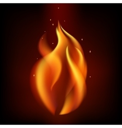 Red burning fire flame on black background vector image